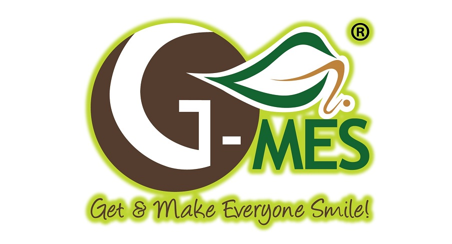 G-MES INTERNATIONAL PTE. LTD.